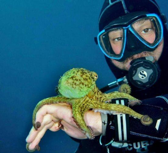 epidaurum-diving-octopus